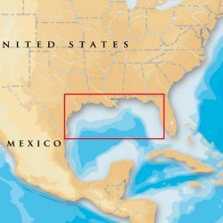 Navionics Platinum Plus Gulf Of Mexico Msd/907P+ Msd/907P+