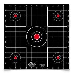 Birchwood Casey Dirty Bird 12in Sight In Target-1600 Targets